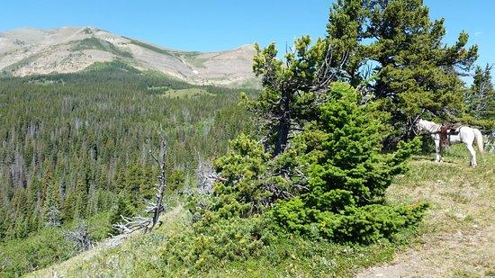 East Glacier Park Picture
