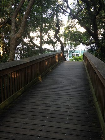 Hampton Inn & Suites Jekyll Island: View of the hotel from the boardwalk