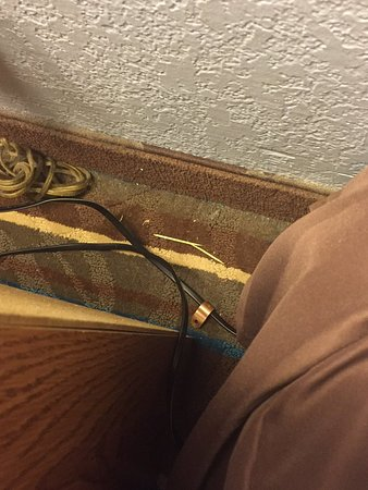 Super 8 Havre De Grace Aberdeen Area: Nasty toothpicks and other things on the room floor. Not clean at all.