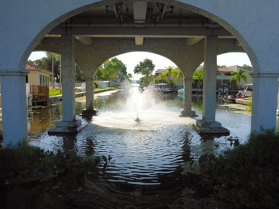 Palm Harbor, FL: view of the canal