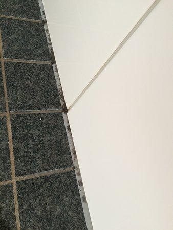 Skt. Petri: MOLD in shower