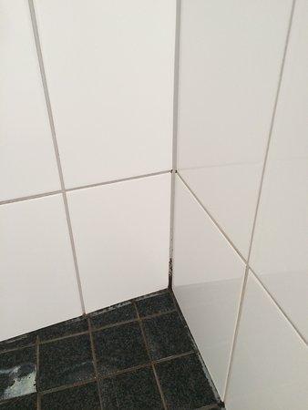 Skt. Petri: MOLD in shower