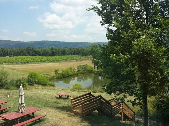 Hillsboro, VA: Notaviva Vineyards