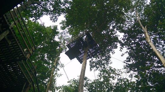 Çelik Halat ve Hava Macerası Parkları