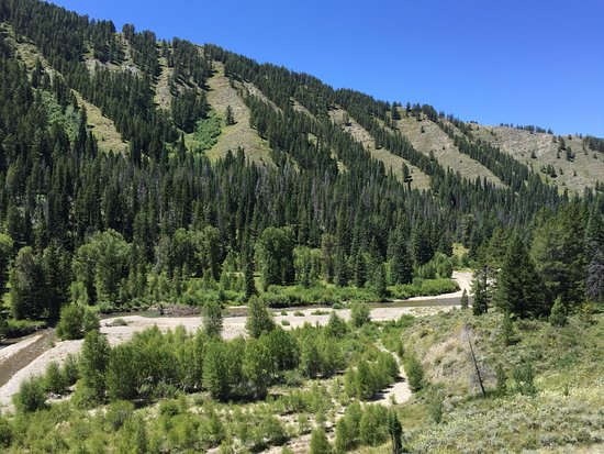 A-OK Corral / Horse Creek Ranch: great view!