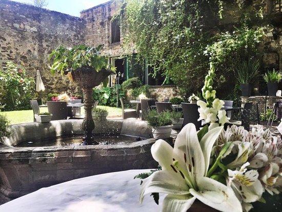 El jard n de los milagros guanajuato men precios y restaurante opiniones tripadvisor - Jardin des crayeres menu ...