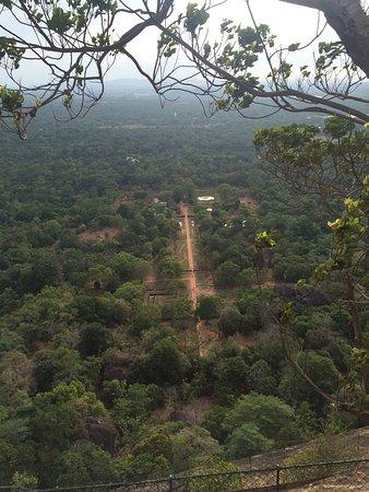 Benteng Sigiriya - Batu Singa: photo0.jpg
