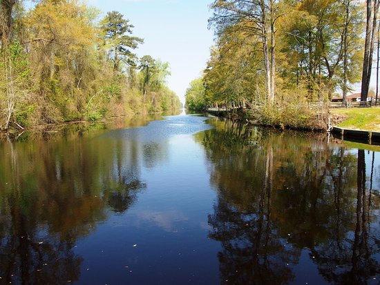 South Mills, NC: Canal at Dismal Swamp