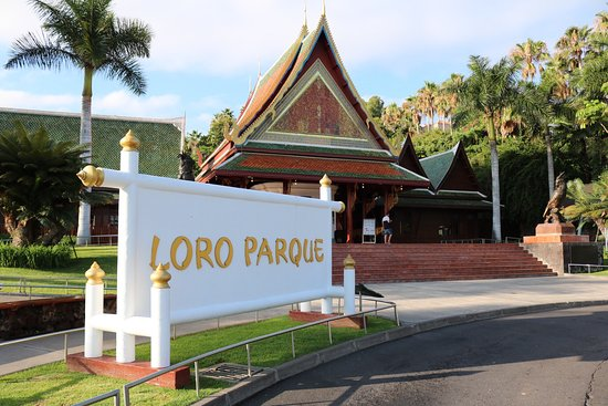 Siam Park and Loro Parque close as health protection comes first  Photo0jpg