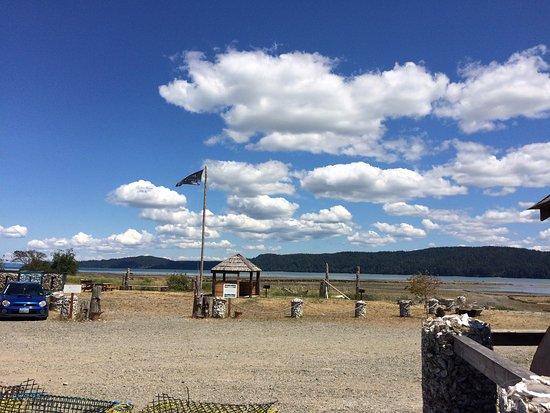 Lilliwaup, Вашингтон: Picnic area near oyster beds