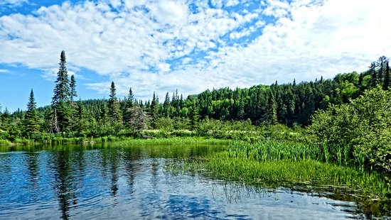 Elk Lake, Canada: Channel to Bloom Lake