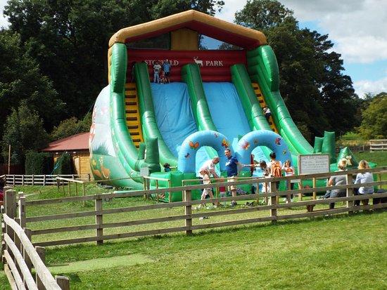 Wetherby, UK: Activity at Stockeld Park