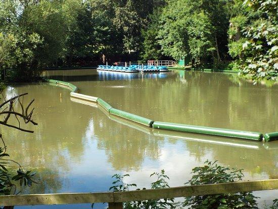 Wetherby, UK: Boats at Stockeld Park