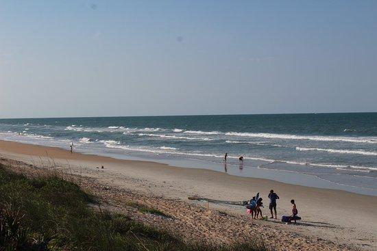 Happy Birthday to me!!! - Picture of Apollo Beach, New Smyrna Beach - TripAdvisor