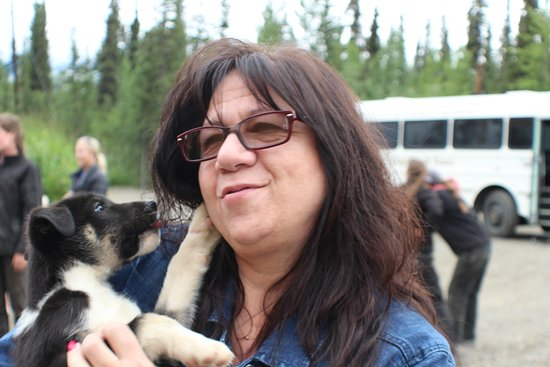 Cantwell, AK: My wife with one of the puppies