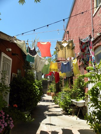 """Geyserville, Californië: We walked through this """"alley"""" to get to the outdoor seating area"""