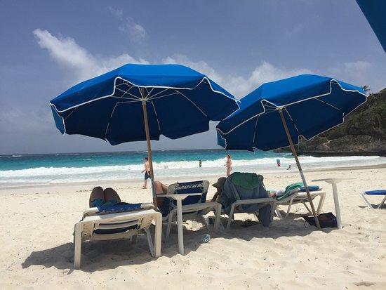 Costa atlantica, Barbados: photo3.jpg