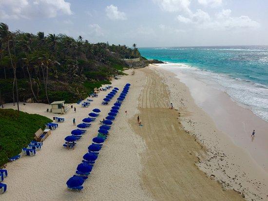 Costa atlantica, Barbados: photo4.jpg