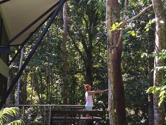 Ojochal, Kostaryka: Balcony
