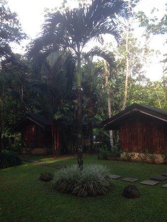 Rio Tico Safari Lodge: photo1.jpg