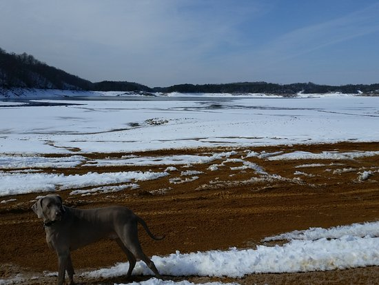 Dandridge, TN: January when the lake is at it's lowest and after a snow