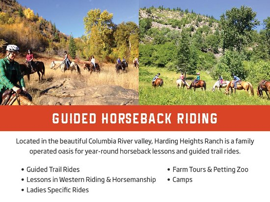 Rossland, Canada: Guided Horseback and trail Rides