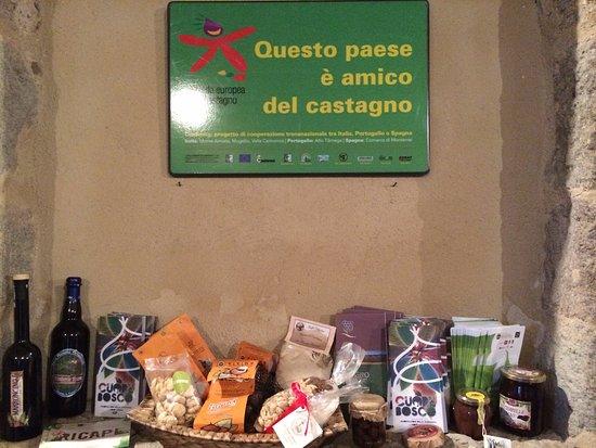 Arcidosso, Italia: Degustazione al castello