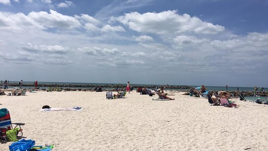 Nokomis, FL: Our most amazing place on EARTH!