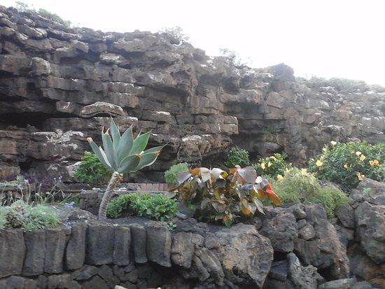 Punta Mujeres, Ισπανία: zona esterna della caverna curata da piante