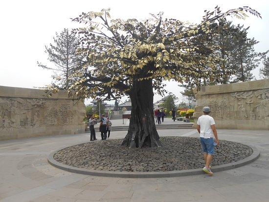 Grutas de Yungang (Datong):: árbol especial en la plazoleta av. de acceso.