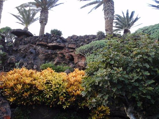 Punta Mujeres, Ισπανία: bellezza unica tra rocce e piante della caverna