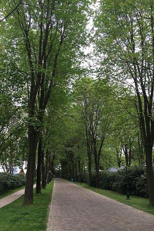TopParken - Landgoed de Scheleberg: entrance drive