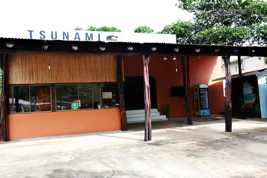 Tsunami Surf Hostel