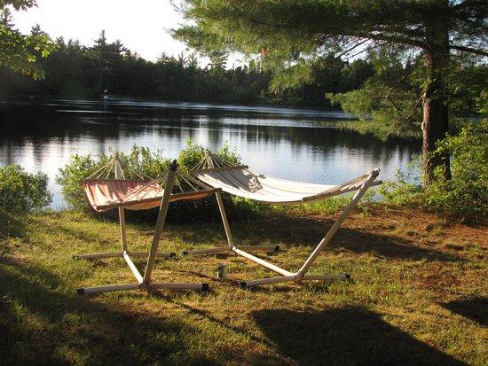 Caledonia, Kanada: Relax in the Sun