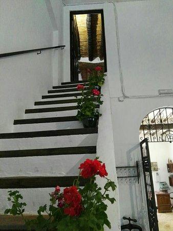 Lucena, Spania: Museo Bodega El Alfoli
