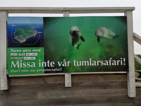 Skåne län, Sverige: 20160727_123659_large.jpg