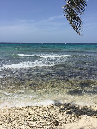 Placencia, Belize: Good place to dive in