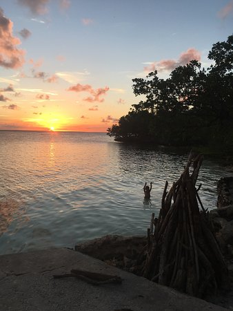 Green Turtle Cay: Sunset, ceviche, moray
