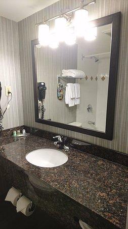 Regency Suites Hotel Calgary Photo