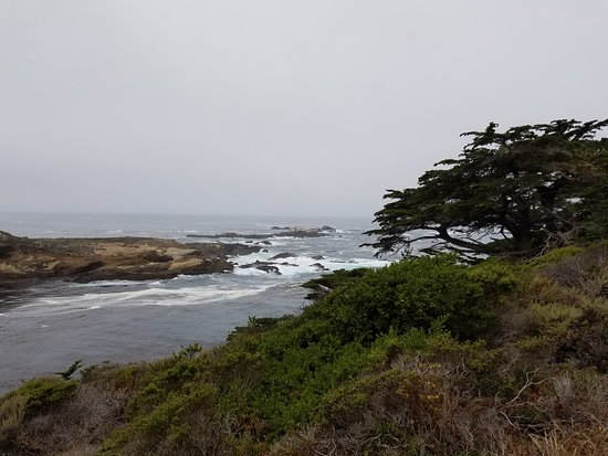 Point Lobos State Reserve: so many views while hiking