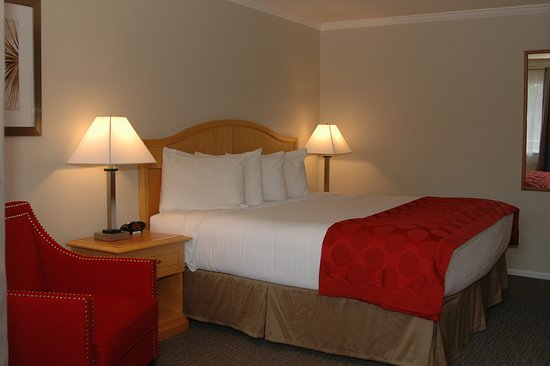 Duncan, كندا: Standard King Room