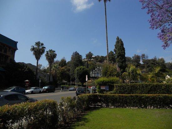 Orange Drive Hostel: Θεα εξω στην εισοδο !!
