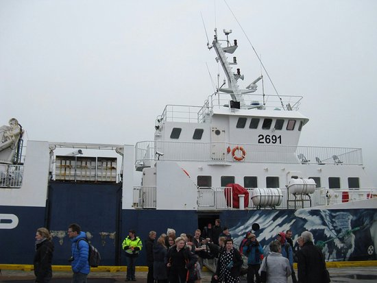 Dalvik, ไอซ์แลนด์: Saefari