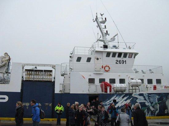 Dalvik, Islandia: Saefari