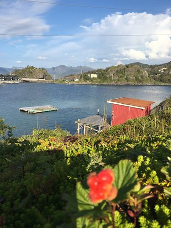 Senja, Noorwegen: photo3.jpg
