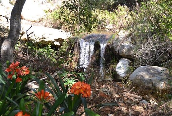 San Ysidro Ranch, a Ty Warner Property: A close up of the waterfall