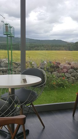 Banchory, UK: 20160726_125203_large.jpg