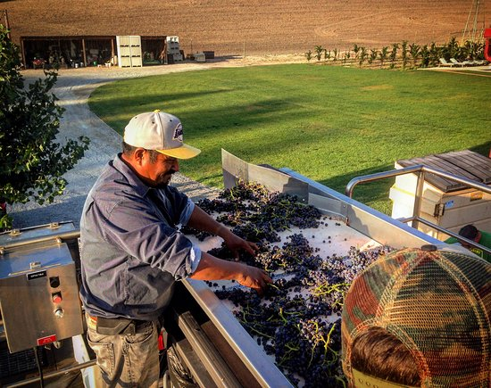 Templeton, CA: Venteux does everything by hand!