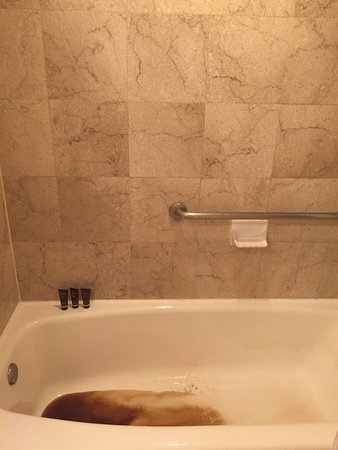 The Ritz-Carlton, San Juan: The brown sludge coming out of the shower head.