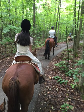 Uxbridge, كندا: Nice and cool to ride in the forest